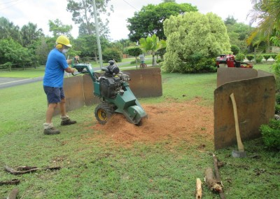 Bear-Stump-Grinding-Getting-the-end-of-the-stump.