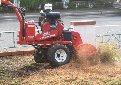 Bear Stump Grinding Services - Stump Humper in action
