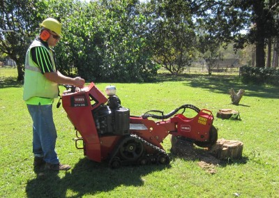 Bear Stump Grinding Services - Toro (1)